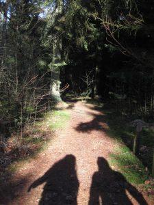 elfen godin fee heling sjamanisme feenrijk elfenrijk reincarnatie dood transformatie visioen quest